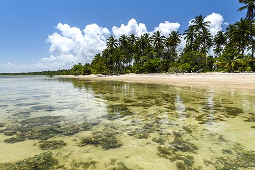 Boipeba, um lugar onde o mar encontra a tranquilidade.